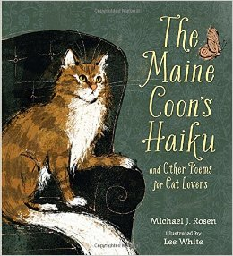 maine coon haiku